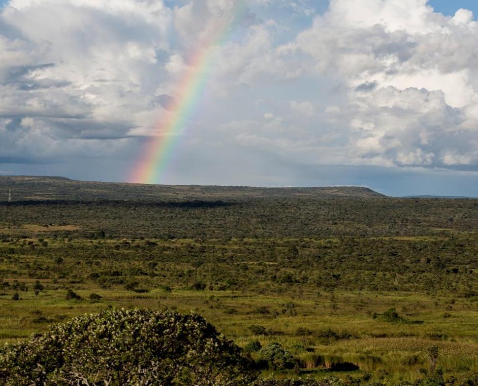 Vastenactie: virtuele wandeltocht door Afrika